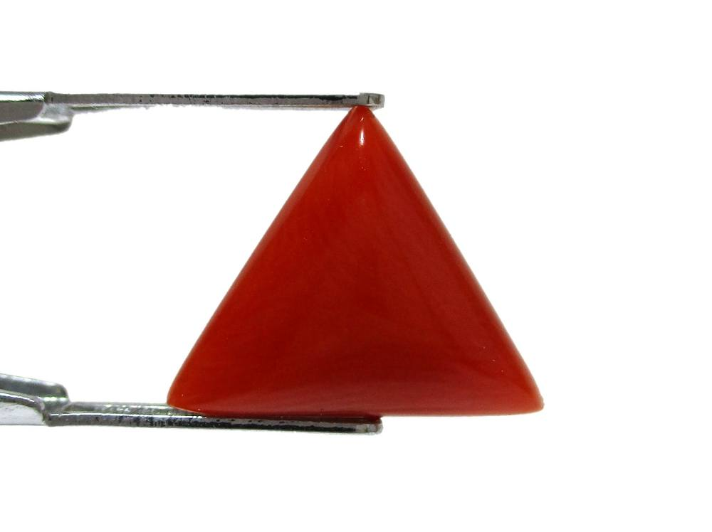Red Coral - 5.05 Carat - GFE04001 - Image 3