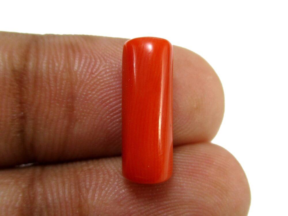 Red Coral - 4.40 Carat - GFE04052 - Image 3