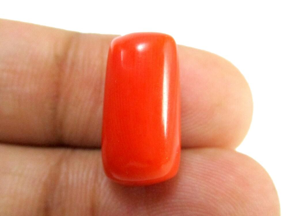 Red Coral - 10.20 Carat - GFE04064 - Image 3